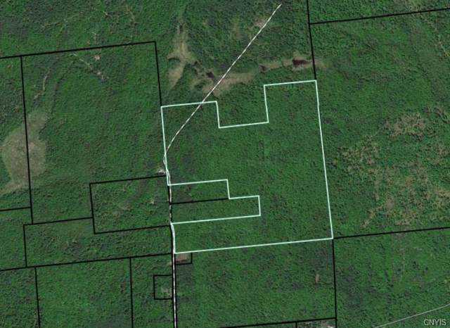 -- Brownville Road, Lyonsdale, NY 13368 (MLS #S1249286) :: BridgeView Real Estate Services