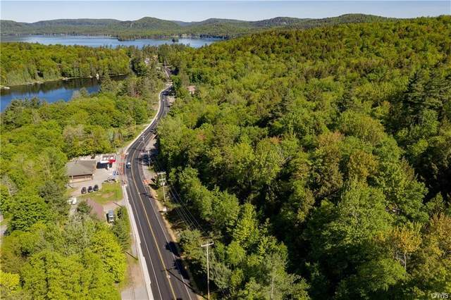 245 State Route 28 Highway, Inlet, NY 13360 (MLS #S1251609) :: Updegraff Group