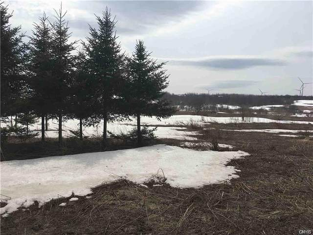 0 State Route 168, German Flatts, NY 13407 (MLS #S1252149) :: Updegraff Group
