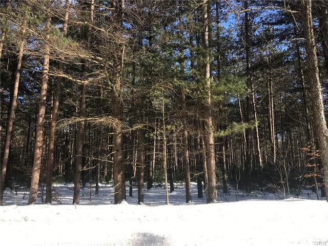 Lot 3 Partridgeville Road, Greig, NY 13312 (MLS #S1252613) :: BridgeView Real Estate Services