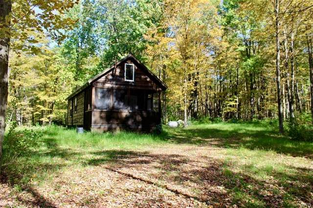 3244 County Route 22, Orwell, NY 13144 (MLS #S1253414) :: Lore Real Estate Services