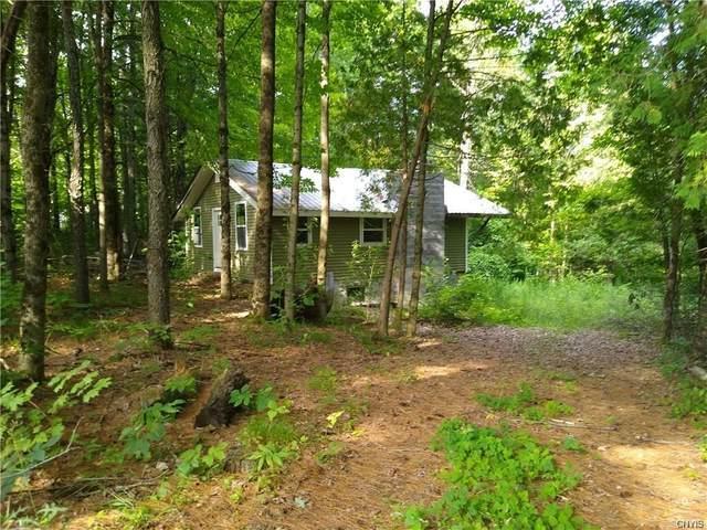 14112 Hermitage Road, Diana, NY 13648 (MLS #S1253735) :: BridgeView Real Estate Services