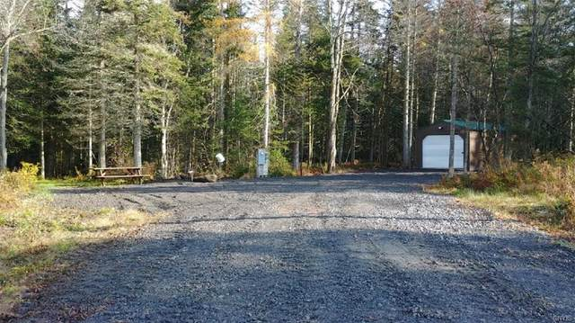339 N 339 Nys Route 8 Road, Morehouse, NY 13353 (MLS #S1254193) :: Avant Realty
