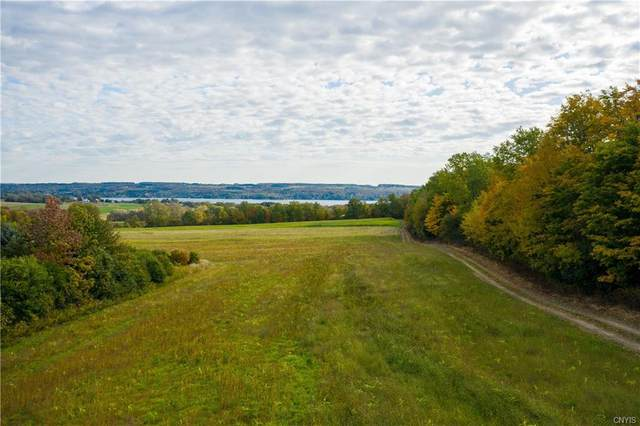 2532 Giles Road, Skaneateles, NY 13152 (MLS #S1255342) :: Updegraff Group
