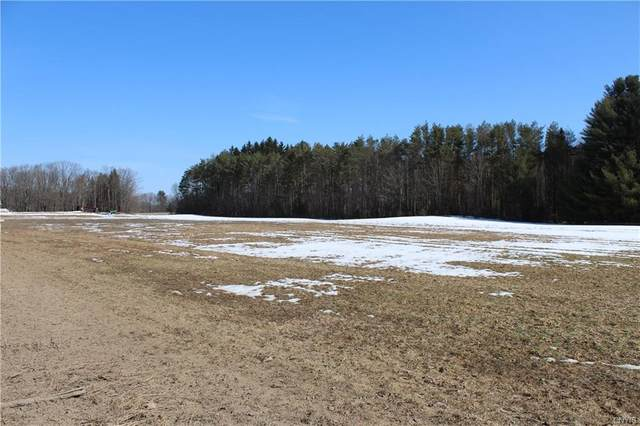 0 Co Rt 48, Albion, NY 13142 (MLS #S1256232) :: BridgeView Real Estate Services