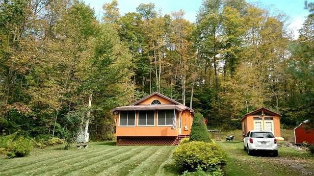 117 Lorton Lake Drive, Orwell, NY 13302 (MLS #S1256264) :: BridgeView Real Estate Services