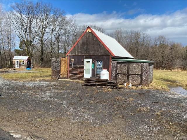 224 Miller Road, Sandy Creek, NY 13083 (MLS #S1256873) :: MyTown Realty