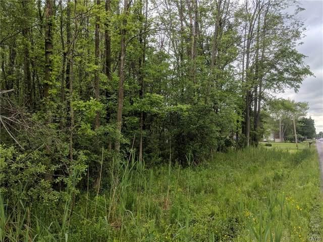 0 Route 31, Sullivan, NY 13030 (MLS #S1257403) :: Updegraff Group