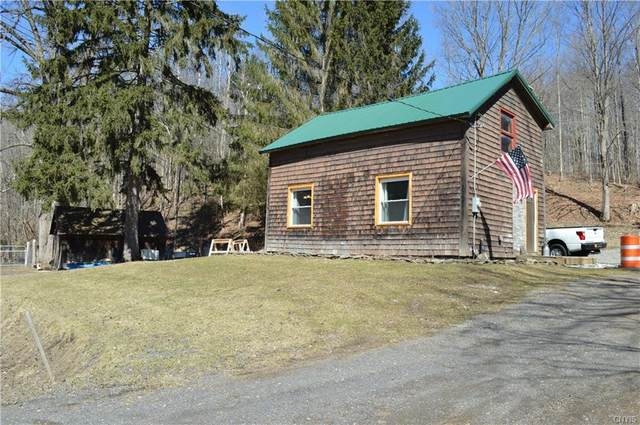 2107 State Route 392, Virgil, NY 13045 (MLS #S1257607) :: Updegraff Group
