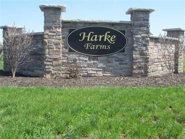 3853 Hallston Drive, Clay, NY 13090 (MLS #S1257878) :: The Chip Hodgkins Team