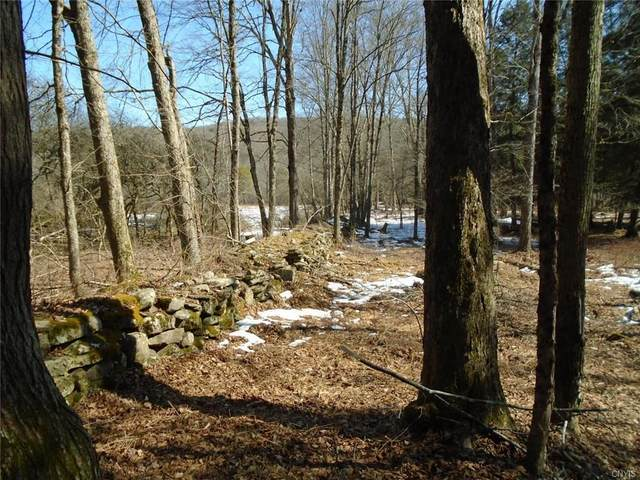 537 County Road 4, Preston, NY 13830 (MLS #S1258306) :: MyTown Realty