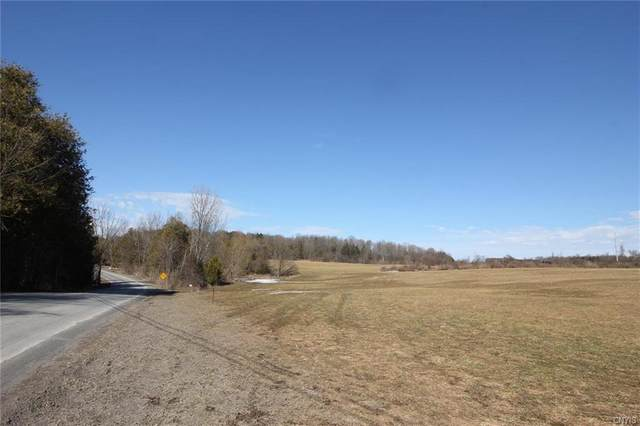 000 Jones Road, Litchfield, NY 13357 (MLS #S1258371) :: MyTown Realty