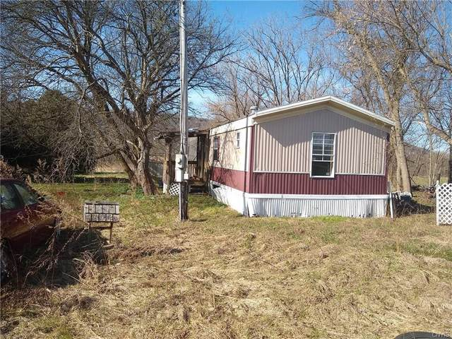 3038 State Route 5, Schuyler, NY 13340 (MLS #S1259680) :: Updegraff Group