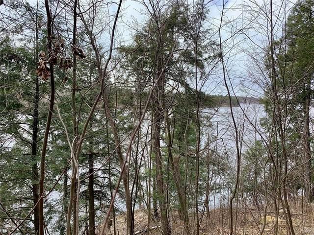 0 Black Lake Road, Macomb, NY 13646 (MLS #S1260213) :: Robert PiazzaPalotto Sold Team