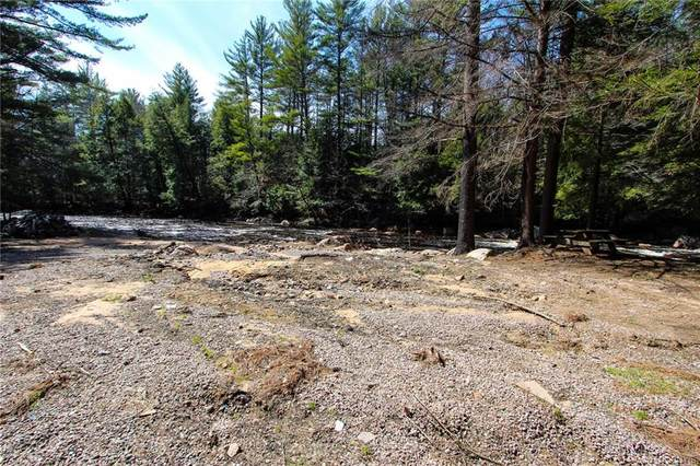 6531 Erie Canal Road, Watson, NY 13343 (MLS #S1260284) :: MyTown Realty