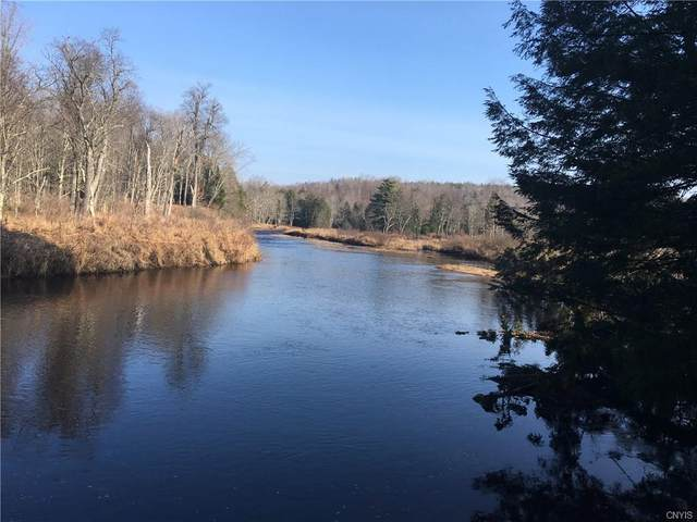 11131 Roberts Road, Remsen, NY 13338 (MLS #S1260855) :: Updegraff Group