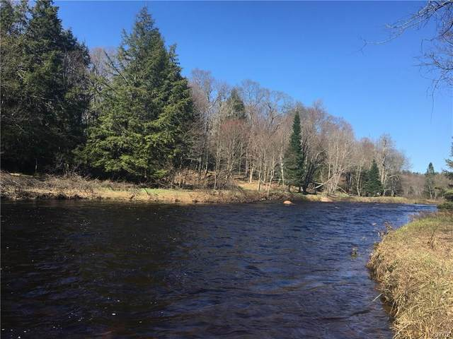 11103 Roberts Road, Remsen, NY 13338 (MLS #S1260859) :: Updegraff Group