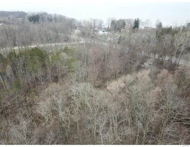 00 State Route 5, Portland, NY 14769 (MLS #S1262021) :: Robert PiazzaPalotto Sold Team