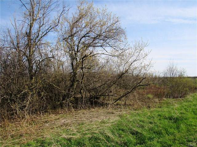 0 (Lot A) Burton Road, Hounsfield, NY 13685 (MLS #S1262500) :: BridgeView Real Estate Services