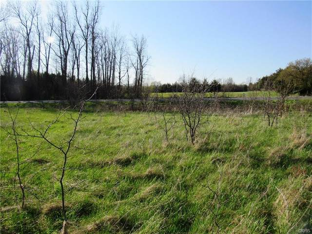 0 (Lot B) Burton Road, Hounsfield, NY 13685 (MLS #S1262505) :: BridgeView Real Estate Services