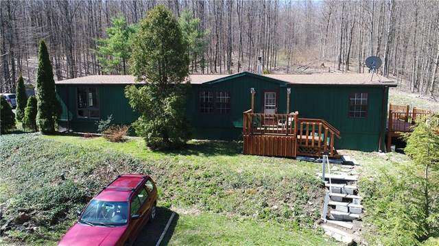 1127 Willowdale Road, Spafford, NY 13152 (MLS #S1264075) :: MyTown Realty