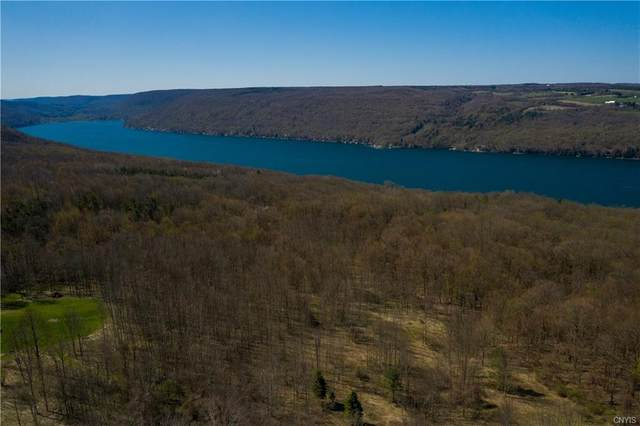 Bacon Hill Wavelength Drive, Spafford, NY 13152 (MLS #S1264599) :: Lore Real Estate Services