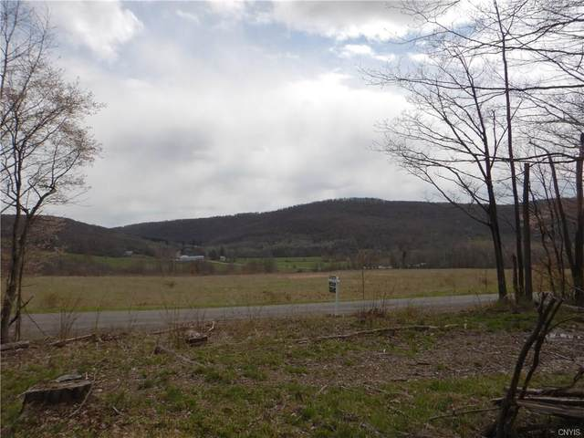 0 Hauck Hill Road, Virgil, NY 13045 (MLS #S1264688) :: Lore Real Estate Services
