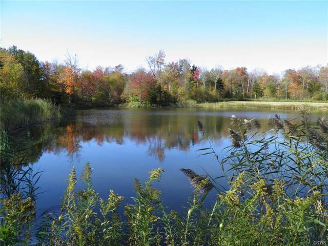 0 Gallo Trail Road, Osceola, NY 13489 (MLS #S1264715) :: Lore Real Estate Services