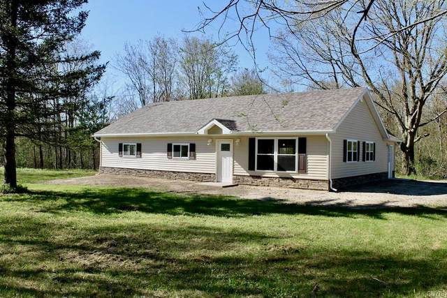 600 Hadley Road, Sandy Creek, NY 13145 (MLS #S1265537) :: Lore Real Estate Services