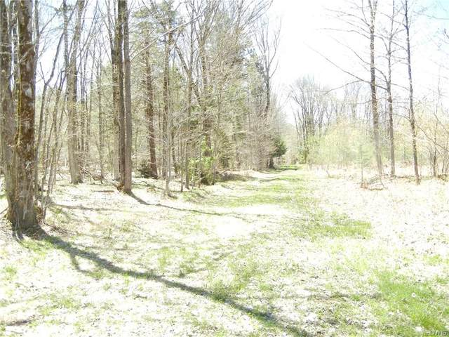 0 Woodlot Road, West Turin, NY 13325 (MLS #S1265833) :: BridgeView Real Estate Services