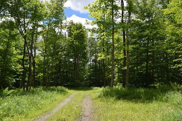 0 State Route 28, Webb, NY 13472 (MLS #S1266036) :: 716 Realty Group