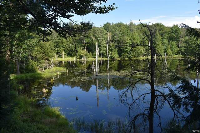 0 Osceola Road, Lewis, NY 13489 (MLS #S1267718) :: Thousand Islands Realty