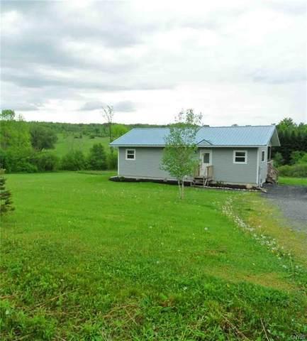 1790 Newport Road, Newport, NY 13431 (MLS #S1268101) :: Lore Real Estate Services