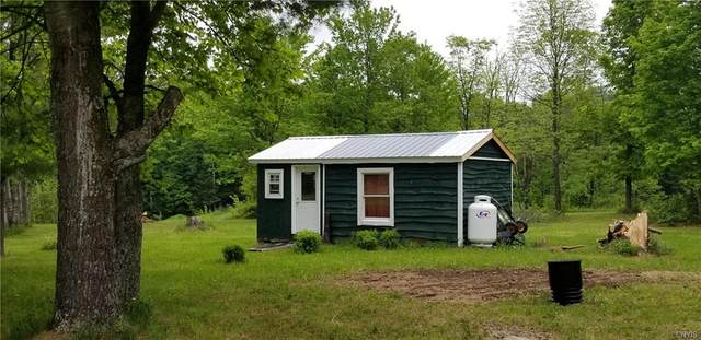 7946 Mile Square Road, Harrisburg, NY 13626 (MLS #S1268154) :: MyTown Realty