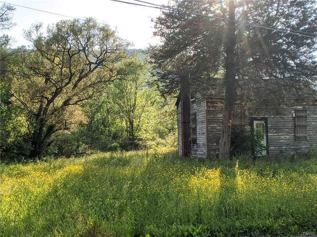 2263 Tully Farms Road, Lafayette, NY 13159 (MLS #S1268624) :: MyTown Realty