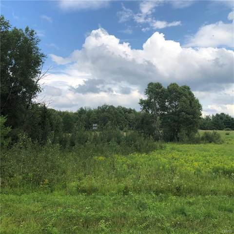 27 Eels Road, Pierrepont, NY 13617 (MLS #S1269130) :: BridgeView Real Estate Services