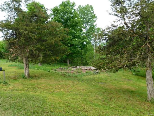 29195 Spies Road, Alexandria, NY 13679 (MLS #S1270612) :: 716 Realty Group
