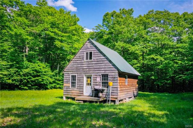 53 Donavan Hill Road, Salisbury, NY 13454 (MLS #S1271998) :: 716 Realty Group