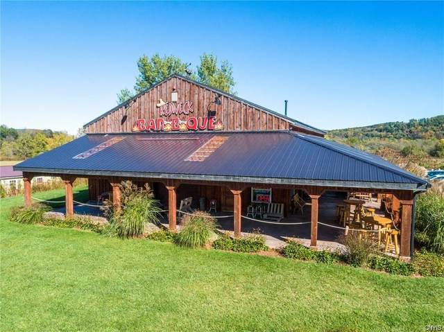4938 State Highway 28, Hartwick, NY 13326 (MLS #S1272305) :: Thousand Islands Realty