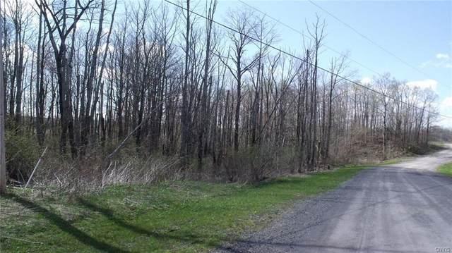 0 Cogar Drive, Schuyler, NY 13340 (MLS #S1272587) :: MyTown Realty
