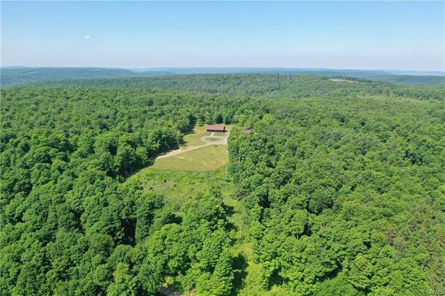 2265 Lewis Road, Nelson, NY 13061 (MLS #S1273538) :: Lore Real Estate Services