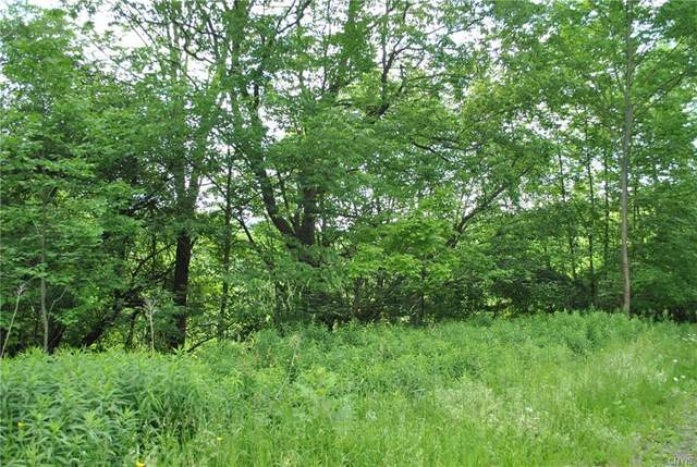 Lot D Purdy Road, Madison, NY 13402 (MLS #S1273665) :: Lore Real Estate Services