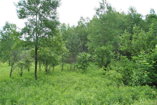 Lot E Purdy Road, Madison, NY 13402 (MLS #S1273699) :: MyTown Realty