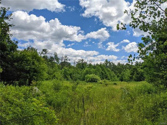Lot 122 State Route 49, Constantia, NY 13044 (MLS #S1274213) :: 716 Realty Group