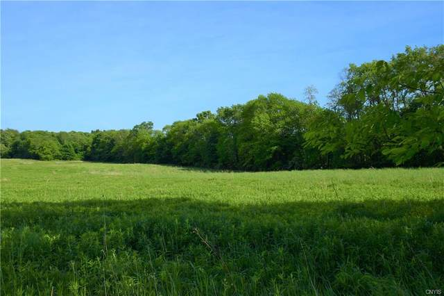 Lot 1 Skaneateles Turnpike, Plainfield, NY 13491 (MLS #S1275551) :: Robert PiazzaPalotto Sold Team
