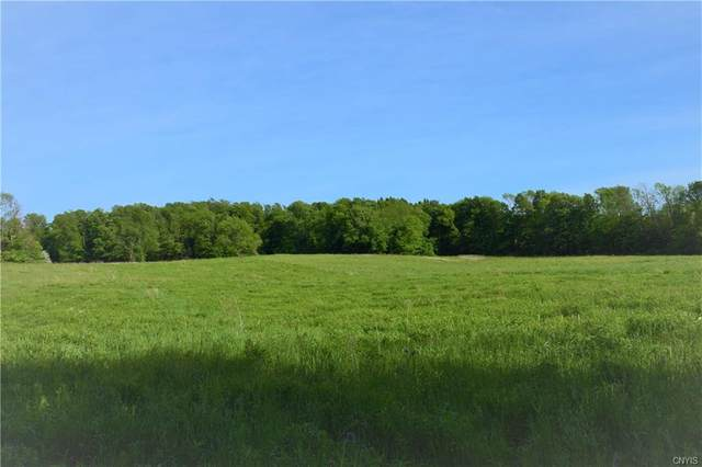 Lot 2 Skaneateles Turnpike, Plainfield, NY 13491 (MLS #S1275908) :: Robert PiazzaPalotto Sold Team