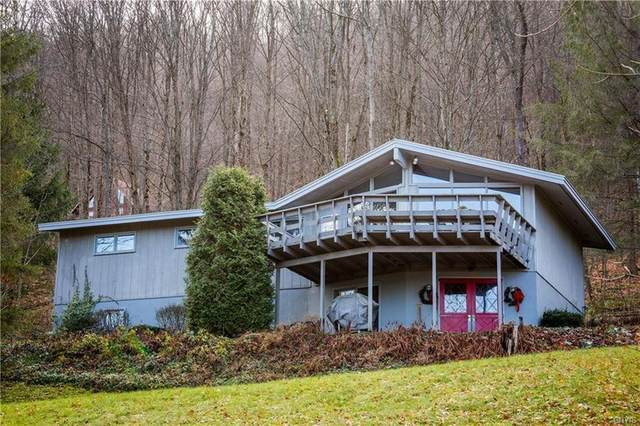 1786 Traverse Road, Virgil, NY 13045 (MLS #S1276672) :: Lore Real Estate Services