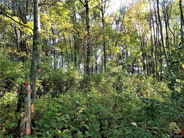 0 Pool Road, Theresa, NY 13691 (MLS #S1276901) :: 716 Realty Group