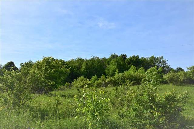 Lot 4 Skaneateles Turnpike, Plainfield, NY 13491 (MLS #S1277366) :: Lore Real Estate Services