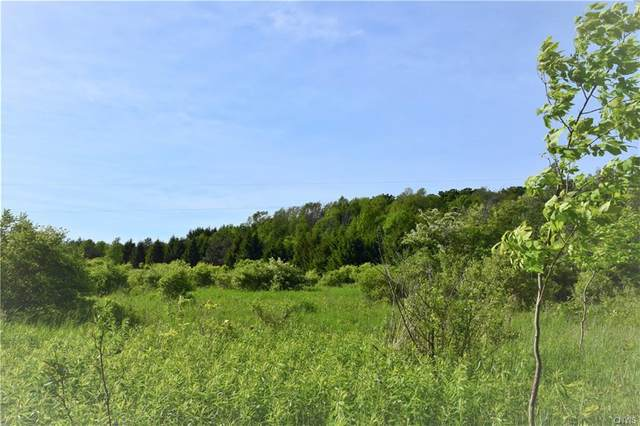 Lot 5 Skaneateles Turnpike, Plainfield, NY 13491 (MLS #S1277387) :: Lore Real Estate Services